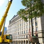 45t Liebherr lifting trees into possition in St. Peters Square Manchester